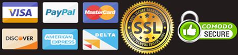 payment-1 logo